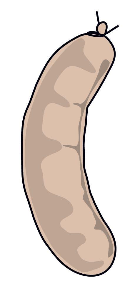 Siedwurst: Obwohl alltäglich, darf sie an keinem Appenzeller Feiertag fehlen. Die in jeder Hinsicht feine Siedwurst (meist Schweins- und Rindfleisch) eint die Halbkantone, ausser sprachlich: Der Innerrhödler sagt «Südwooscht», der Ausser- rhödler «Södworscht». (Illustration: Selina Buess)