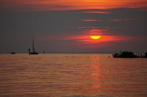 Sonnenuntergang am Bodensee beim Rheindelta. (Bild: Toni Sieber)