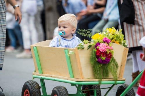 Festumzug am Jodlerfest Schötz. Im Bild: Alpaufzug mit Kühen der JVA Wauwilermoos. (Bild: Manuela Jans-Koch. Schötz 24.Juni 2018)