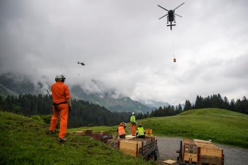 Sammelstelle der Munitionsreste auf der Säntisalp. (Bild: Keystone/Gian Ehrenzeller)