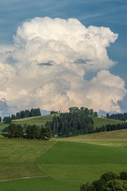 Die Wolke im Speicher ist zufrieden mit dem Wetter. (Bild: Hansjörg Nüesch)