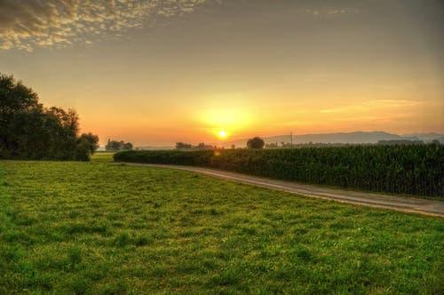 Sonnenaufgang im Rheindelta. (Bild: Toni Sieber)