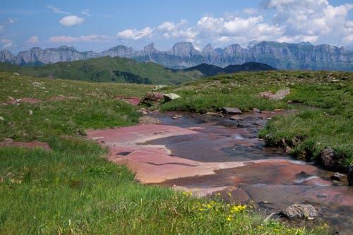 Churfirsten aus der Gegend um die Spitzmeilenhütte, mit dem roten Verrocanogestein. (Bild: Franz Häusler)
