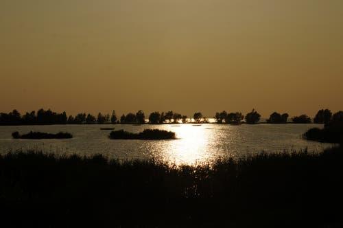 Sonnenuntergang am Bodensee im Gegenlicht. (Bild: Toni Sieber)