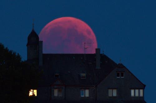 Und weitere Bilder aus der Welt: Bernkastel-Kues, Deutschland (Bild: Harald Tittel / AP)