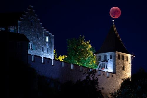 Weitere Bilder aus der Schweiz: Neuhausen (Bild: Melanie Duchene / Keystone)