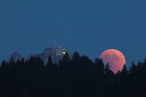Schöner Mondaufgang direkt neben dem Säntis. Fotografiert mit dem Teleskop in der Sternwarte Toggenburg in St.Peterzell. (Bild: Roland Gemperle)