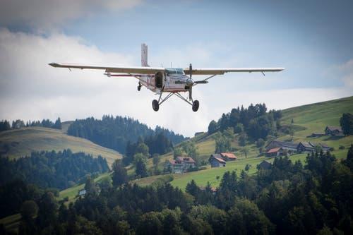 Ein Pilatus Porter bringt die Fallschirmspringer nach oben. (Bild: Ralph Ribi)