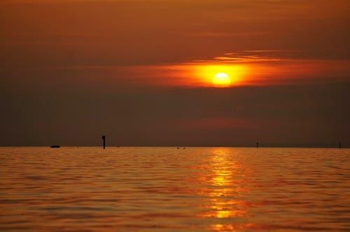 Sonnenuntergang am Bodensee Rheindelta. (Bild: Toni Sieber)