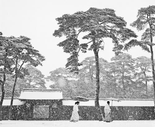 Shinto-Priester im Hof des Meiji-Schreins, Tokio, Japan 1951. (Bild: Werner Bischof/Magnum Photos)
