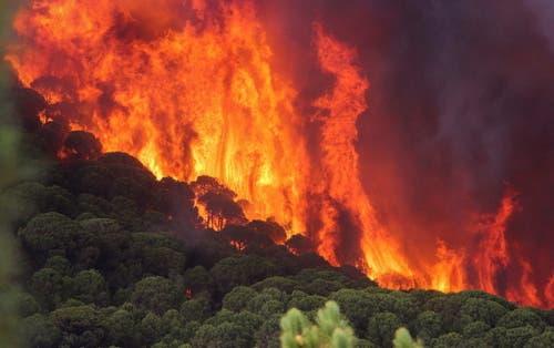 Im Süden Spaniens wüten Waldbrände. (Bild: Keystone)