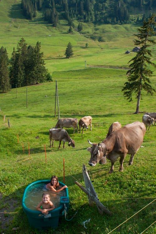 Ein besonders idyllisches Badevergnügen für Ria und This auf der Alp Egghittä (Mörli). (Bild: Lisbeth Burch)