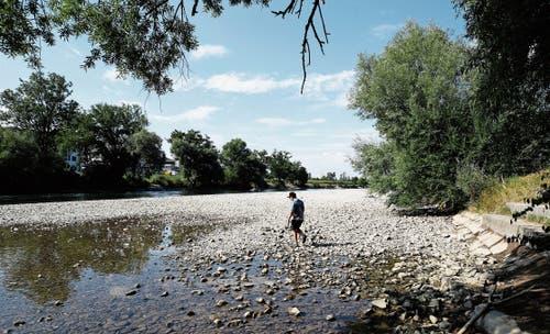 Die Reuss bei der Zollbrücke zwischen Hünenberg und Sins führt deutlich weniger Wasser. (Bild: Stefan Kaiser (31. Juli 2018))