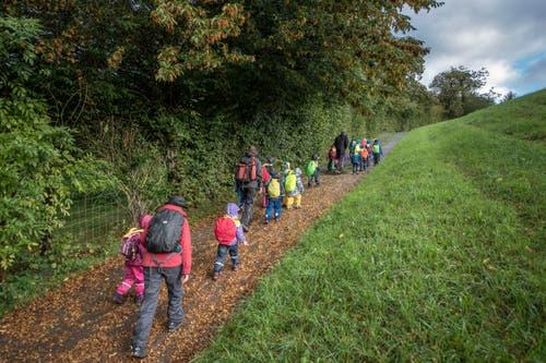 Auch in Meggen machen sich die Kindergärtler mit ihren Lehrpersonen auf den Weg zum Wald. (Bild: Pius Amrein, Meggen, 24. September 2018)