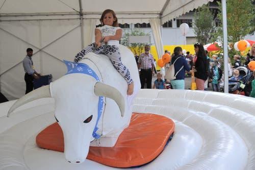 Auch einen Stier reiten kann man der Messe. (Bild: Urs Hanhart, Altdorf, 8. September 2018)