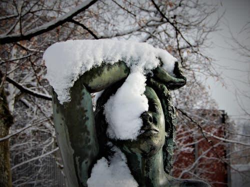 Was so ein Schäumchen Schnee bewirken kann. (Bild: Margrith Imhof-Röthlin, 10. Januar 2019)