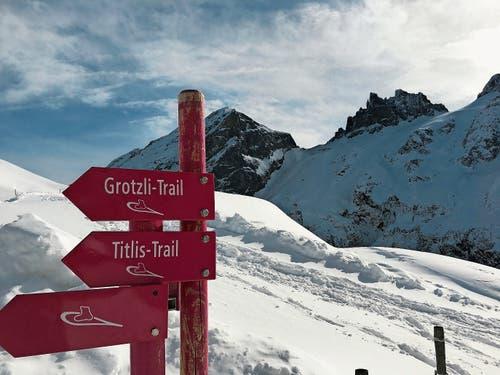 Der Grotzli-Trail bietet Aussicht auf Titlis und Spannörter – ganz ohne Rummel. (Bild: Nadja Sommer)