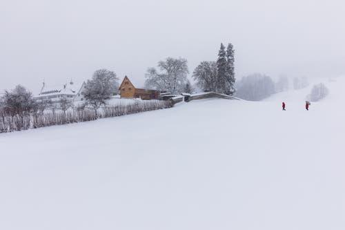 Das Kloster Notkersegg im Schnee. (Leserbild: Christian Wild - 6. Januar 2019)