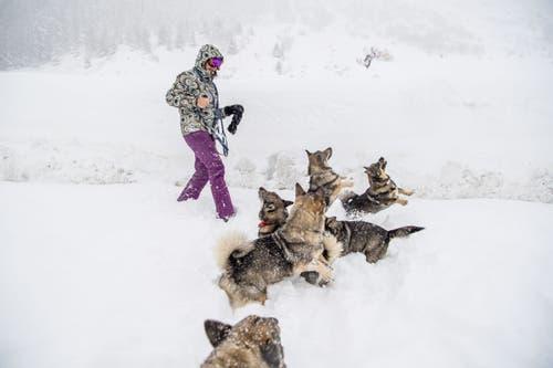Eine Frau und ihre Hunde geniessen den Schnee. (Bild: Nadia Schärli (Andermatt, 14. Januar 2019))