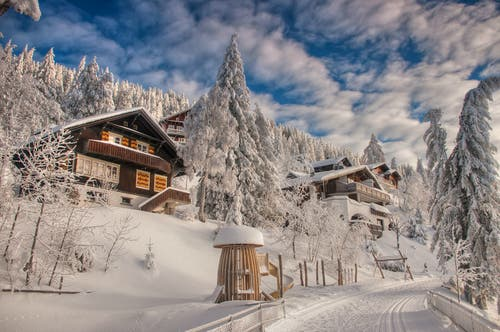 Wintermärchenlandschaft Rigi. (Bild: Caroline Pirskanen, Rigi Kaltbad 15. Januar 2019)