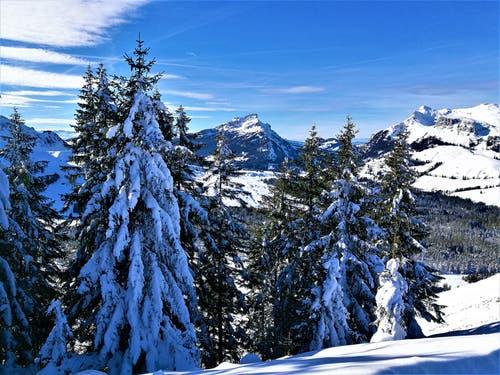 Wintermärchen im Sörenberg. (Urs Gutfleisch (16. Januar 2019))