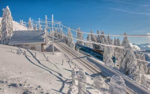 Die Rigi-Bahn auf der Fahrt durch die Winterlandschaft. (Bild: Caroline Pirskanen, 15. Januar 2019)