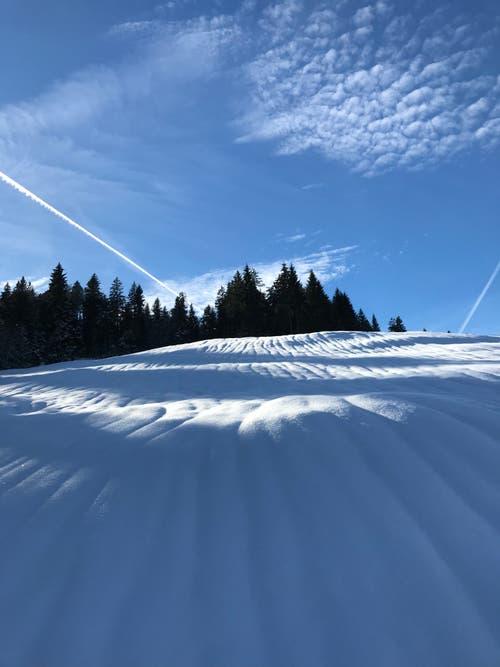 Schnee-Verwehungen oberhalb Finsterwald. (Bild: Fredi Meyer (Finsterwald, 16. Januar 2019))