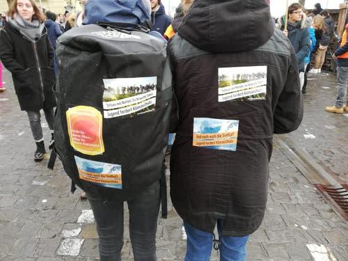 Mit Flyer machen sie auf den Klimawandel aufmerksam. (Bild: Sandra Peter/LZ (Luzern, 18. Januar 2019))