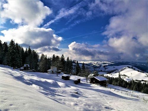 Winterlandschaft im Eigenthal (Bild: Urs Gutfleisch (Eigenthal, 18. Januar 2019))