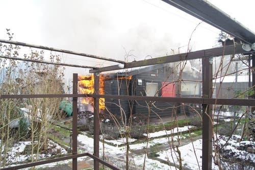 Baar – 20. JanuarAm Sonntagnachmittag ist in Baar ein Gartenhaus in einem Schrebergarten in Brand geraten und beschädigt worden. (Bild: Zuger Polizei)