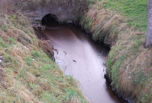 Malters - 27. Januar 2019Eine Passantin sah, dass der Moosgraben stark verschmutzt war. Abklärungen der Polizei ergaben, dass ein Tank einer Kompostieranlage aus noch ungeklärten Gründen überlaufen war. Der entstandene Schaden ist noch nicht abschätzbar.