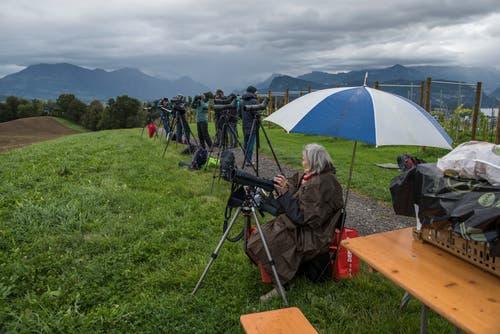 Das regnerische Wetter hielt die Vogel-Freunde nicht von ihrem Vorhaben ab. (Bild: Dominik Wunderli, Kriens, 5. Oktober 2019)
