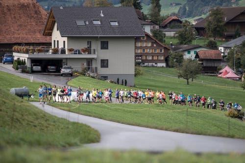 Die Läufer auf dem Weg Richtung First. (Bild: Pius Amrein, 6. Oktober 2019)
