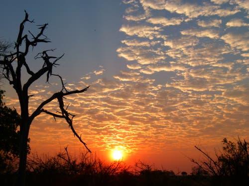 Nördliches Namibia: Sonnenuntergang im Kaokoveld. (Bild: Walter Odermatt)