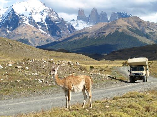 Torres del Paine: Dieser National Park mit seiner wunderbaren Landschaft gehört zu den schönsten Nationalparks in Chile. (Bild: Walter Odermatt)