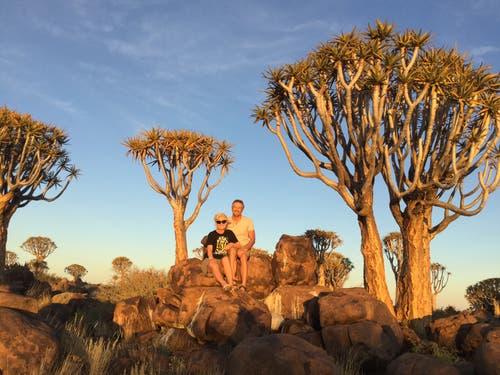 Namibia: in der Nähe von Keetmanshoop befindet sich eine riesige Ansammlung von Köcherbäumen. (Bild: Walter Odermatt)