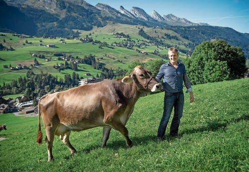 Peter Frei kann mit dem Einsatz als Braunviehexperte Beruf und Passion verbinden. Bilder: Ralph Ribi