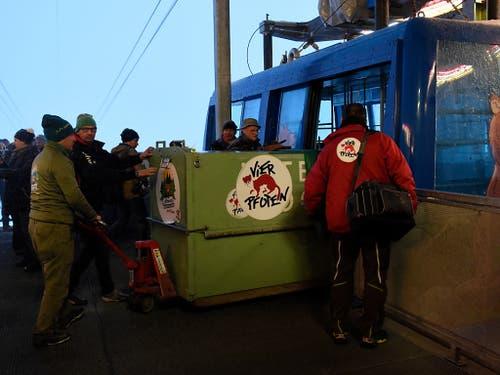 Der Transport der Tiere nach Arosa war eine logistische Herausforderung. (Bild: Stiftung Arosa Bären/Vier Pfoten)