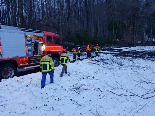 Die Feuerwehr Sennwald musste einige Bäume von Strassen räumen, hier war das Gebiet Rütene betroffen. (Bild: Feuerwehr Sennwald)