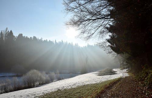 Morgenlicht auf dem Wanderweg im Ostergau. (Bild: Hedy Muff-Ruckli (Willisau, 14. Februar 2019))