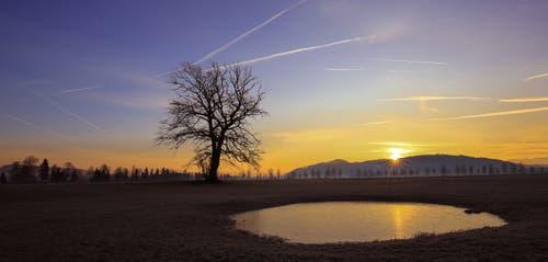 Ein prächtiger Februartag kündigt sich an. Sanft streichen die ersten Sonnenstrahlen über das Moos. (Bild: André Egli, Wauwilermoos, 15. Februar 2019)