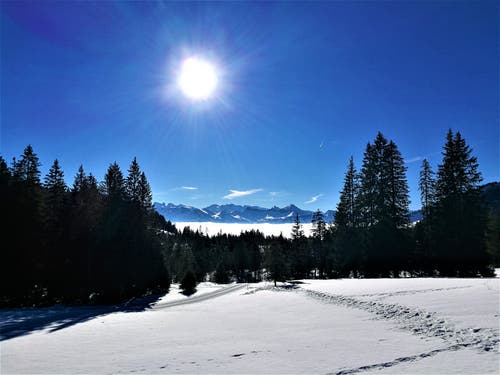 Eine wunderbare Winterlandschaft mit Ausblick auf das Nebelmeer und die Berge. (Bild: Urs Gutfleisch, Glaubenberg, 23. Februar 2019)