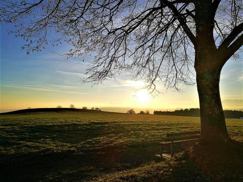Wunderbarer Sonnenaufgang. (Bild: Urs Gutfleisch (Ruswil, 24. Februar 2019))