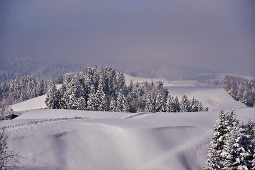Eine winterliche Traumlandschaft im Napfbergland. (Bild: Alfred Herzog (Lutherntal, 4. Februar 2019))