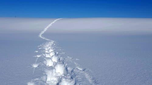 Schneeschuhlaufen im Schurtannengebiet... einfach der Nase nach und sich überraschen lassen! (Bild: Max Mahlstein, Menzingen, 5. Februar 2019)