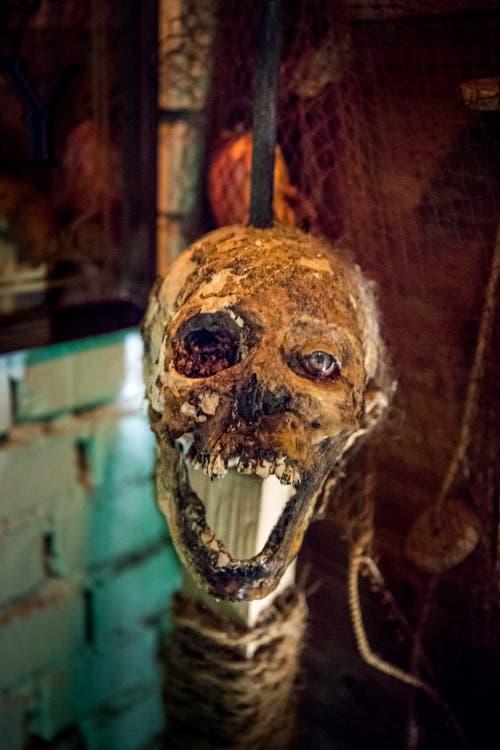 Auch gruselige Totenköpfe aus Hollywood-Filmen gehören zur Deko. (Bild: Andrea Stalder)