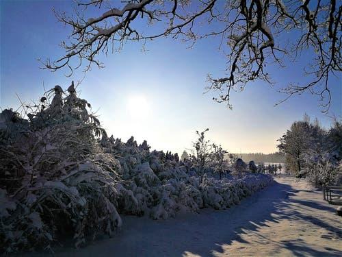 Winterliche Impressionen von Neudorf. (Bild: Urs Gutfleisch (Neudorf, 4. Februar 2019))