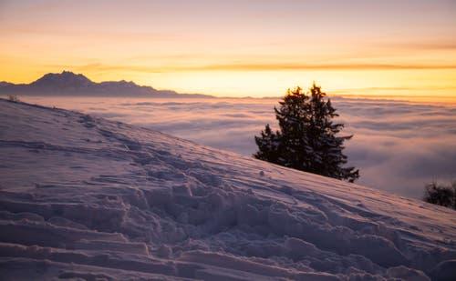 Abendrot auf dem verschneiten Zugerberg. (Bild: Daniel Hegglin, 5. Februar 2019)
