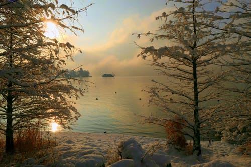 Morgendliche Winterstimmung am Vierwaldstättersee. (Bild: Walter Buholzer, Luzern, 4. Februar 2019)
