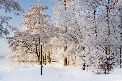 Herrliche Winterstimmung im Villettenpark in Cham. (Bild: Anita Imfeld-Leu, 5. Februar 2019)